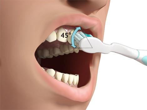 Brosser les dents de lait 2
